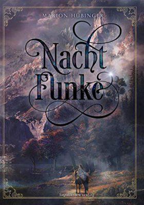 """""""Nachtfunke"""" von Marion Hübinger"""